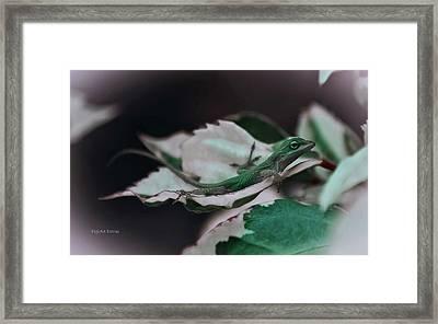 Snow Queen Hammock Framed Print