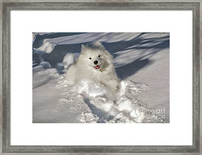 Snow Queen Framed Print by Lois Bryan