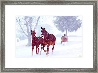 Snow Run Framed Print