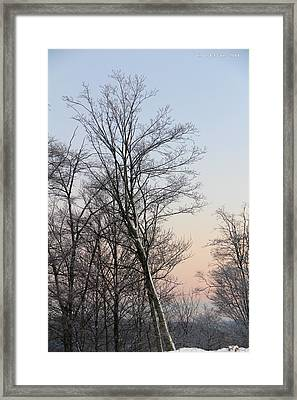 Snow Scene Framed Print by Carolyn Postelwait