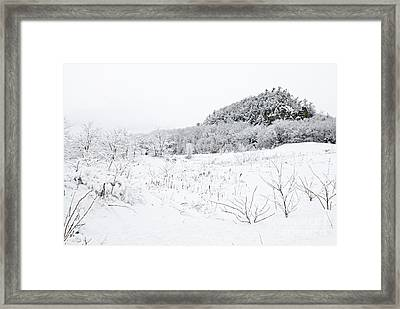 Framed Print featuring the photograph Snow Scene by Larry Ricker