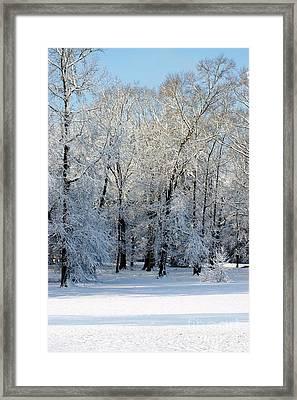 Snow Scene One Framed Print