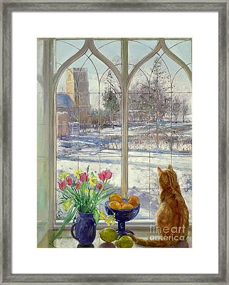 Snow Shadows And Cat Framed Print by Timothy Easton
