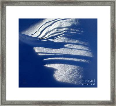 Snow Shadows And Twig Framed Print