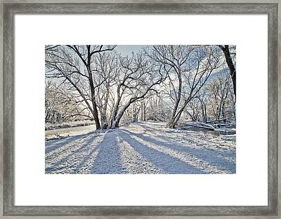 Snow Shadows Framed Print by James Steele