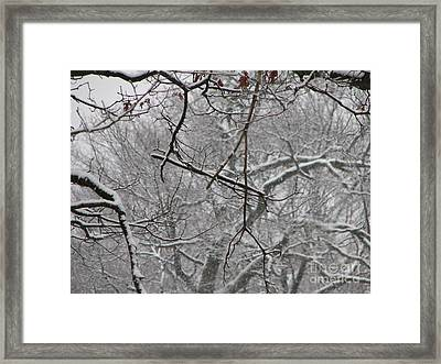Snow Sprite Dance Framed Print by Roxy Riou
