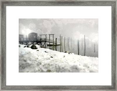 Snow Sticks Framed Print by Diana Angstadt