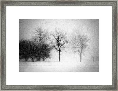 Snow Storm Framed Print by Todd Klassy