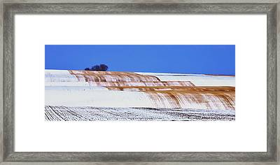 Snow Stubble Tree Line 13955 Framed Print by Jerry Sodorff