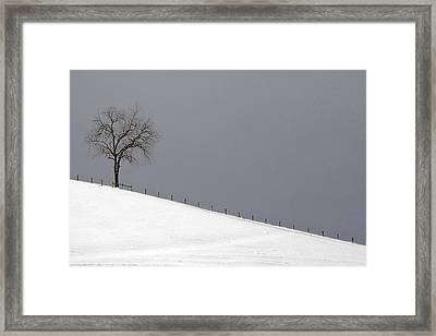 Framed Print featuring the photograph Snow Tree by Ken Barrett