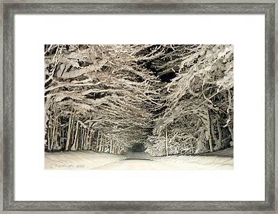 Snow Tunnel At Night Framed Print by Carolyn Postelwait