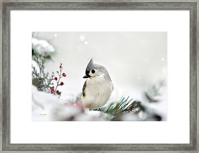 Snow White Tufted Titmouse Framed Print