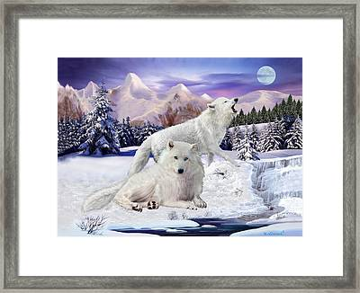 Snow Wolves Of The Wild Framed Print
