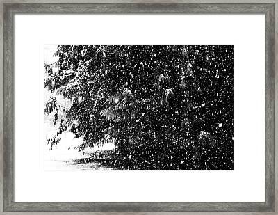Framed Print featuring the photograph Snow by Yulia Kazansky