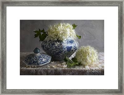 Snowballs Framed Print by Elena Nosyreva