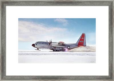 Snowbird Framed Print by Peter Chilelli