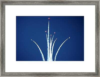 Snowbird Starburst Framed Print by Michael Courtney