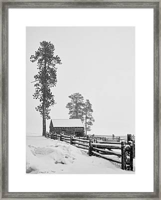Snowbound Framed Print by Alan Toepfer