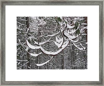 Snowcatchers Framed Print