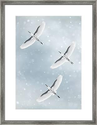 Snowfall Framed Print by Moira Risen