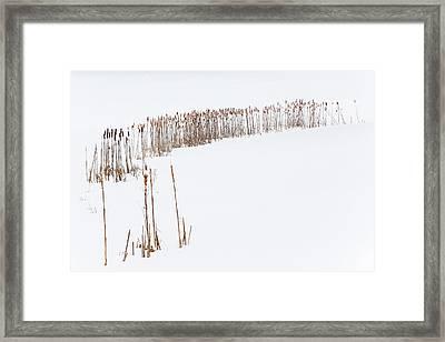 Snowfield 2 - Framed Print