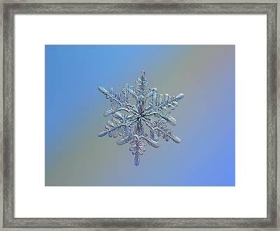 Snowflake Macro Photo - 13 February 2017 - 1 Framed Print