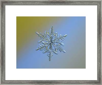 Snowflake Macro Photo - 13 February 2017 - 1 Alt Framed Print