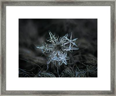 Framed Print featuring the photograph Snowflake Of 19 March 2013 by Alexey Kljatov