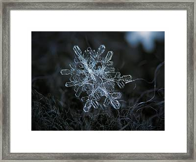 Framed Print featuring the photograph Snowflake Of January 18 2013 by Alexey Kljatov