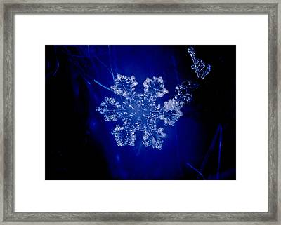 Snowflake On Blue Framed Print