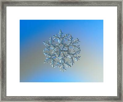 Snowflake Photo - Gardener's Dream Framed Print