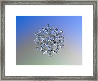 Framed Print featuring the photograph Snowflake Photo - Gardener's Dream Alternate by Alexey Kljatov