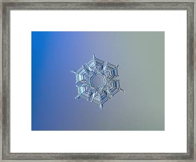 Snowflake Photo - Ice Relief Framed Print