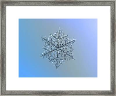 Snowflake Photo - Majestic Crystal Framed Print
