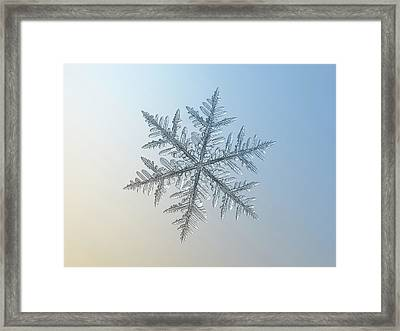 Snowflake Photo - Silverware Framed Print by Alexey Kljatov