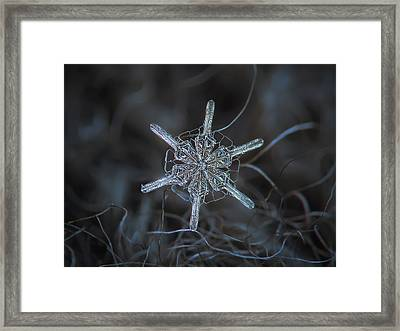 Snowflake Photo - Steering Wheel Framed Print by Alexey Kljatov
