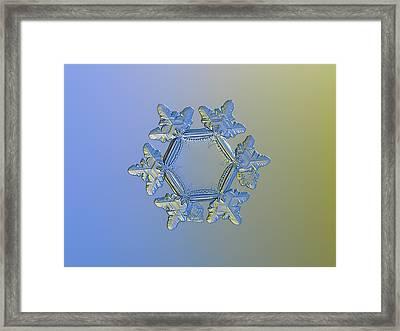 Snowflake Photo - Sunflower, Golden Version Framed Print by Alexey Kljatov