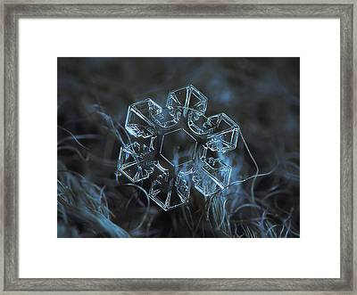 Snowflake Photo - The Core Framed Print
