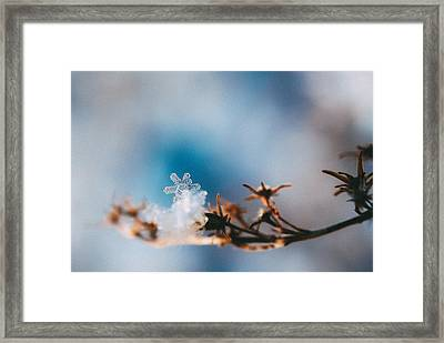 Snowflake Framed Print by Tracy  Jade