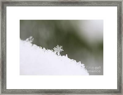 Snowflake Framed Print