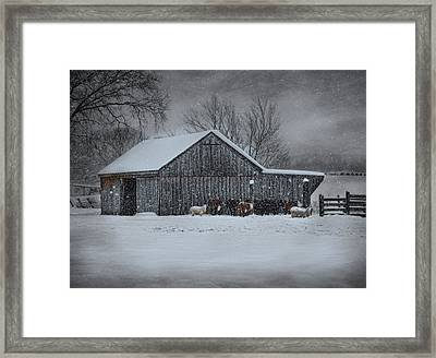 Snowflakes On The Farm Framed Print
