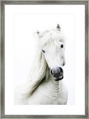 Snowhite Framed Print by Gigja Einarsdottir