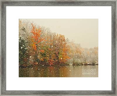 Snowing In Autumn Framed Print by Terri Gostola