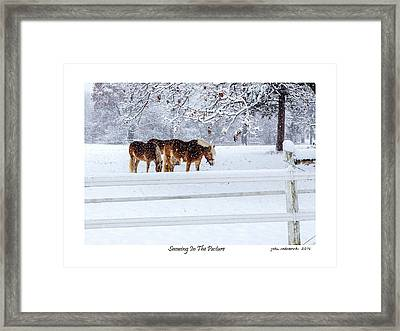 Snowing In The Pasture Framed Print