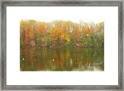 Snowing Upon The Marsh Framed Print by Terri Gostola