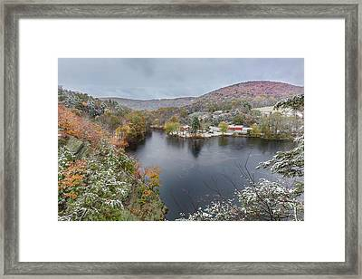 Framed Print featuring the photograph Snowliage by Bill Wakeley