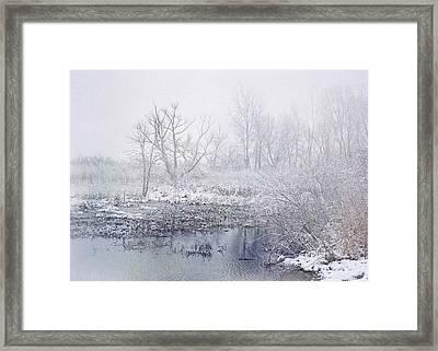 Snowmist Marsh Framed Print by Kathi Mirto