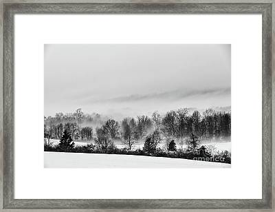 Snowscape Framed Print by Nicki McManus