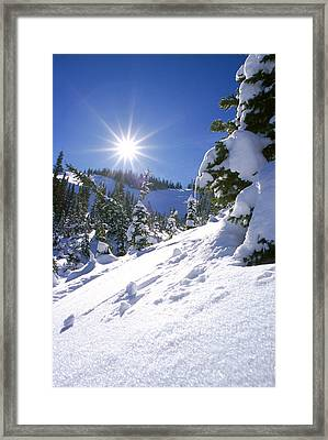 Snowscape With Bright Sun Framed Print