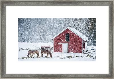 Snowstorm Stowe Vermont Framed Print by Edward Fielding